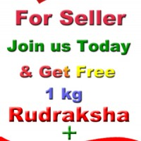 Special Offer For Seller