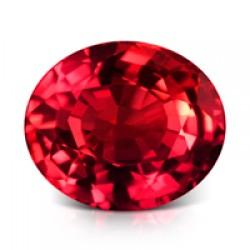 Ruby (533)