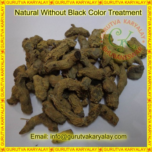 Mantra Siddha Very Rare Kali Haldi (Black Turmeric) Weight 21 Gram Size 3 Piece
