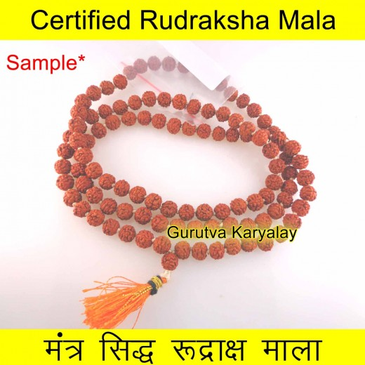 6 MM 5 Mukhi Rudraksha Mala Lab Certified