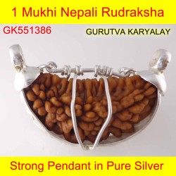 30mm 1 Mukhi Rudraksha In Silver Pendant
