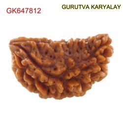 26.38 MM Ek Mukhi Rudraksha