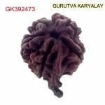 26.48 MM Nepali Ganesha Rudraksh Beads