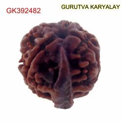22.97 MM Nepali Ganesha Rudraksh Beads