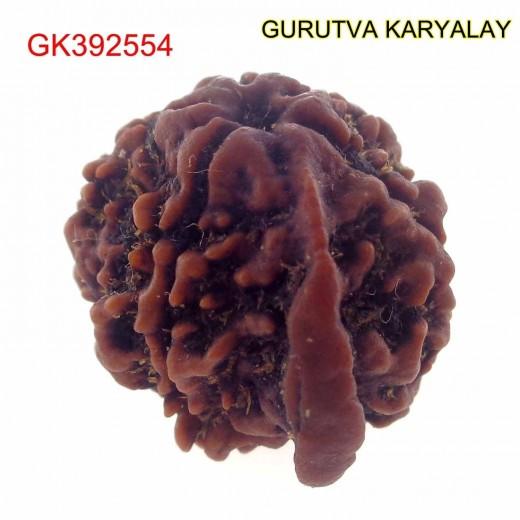 20.74 MM Nepali Ganesha Rudraksh Beads