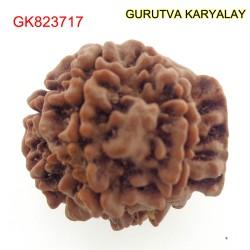 20.90 MM Nepali Ganesha Rudraksh Beads